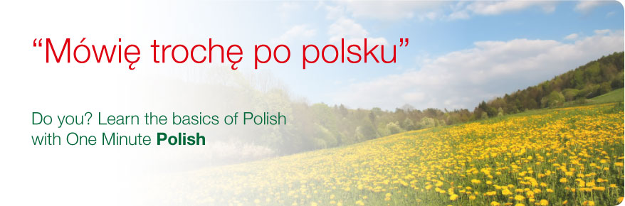 header-oml-polish-878